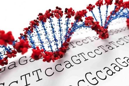 ADHD Medications Gene Testing