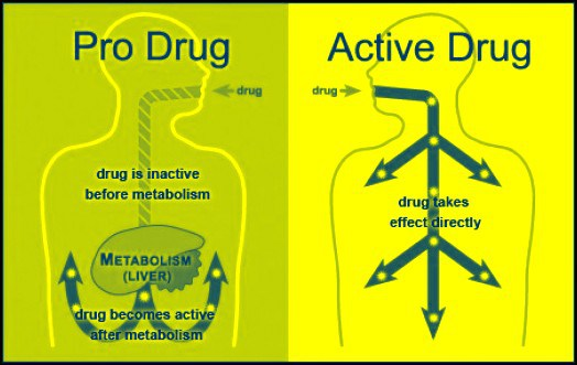 Part 4 Gene Testing To Inform Adhd Drug Therapy Adhd Roller