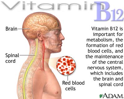 How's Your Vitamin B-12 Level? - ADHD Roller Coaster with ... B12 Deficiency Symptoms