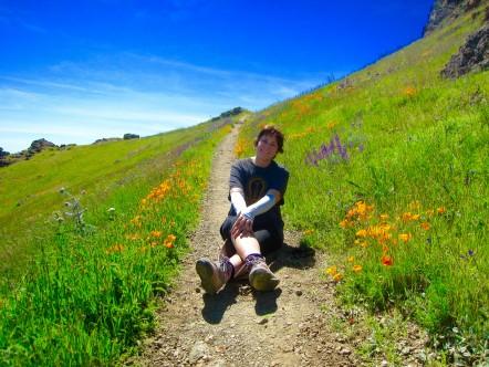 Gina Pera ADHD Roller Coaster blog